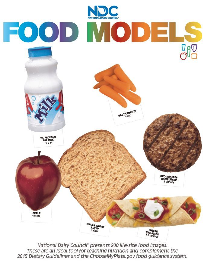 National Dairy Council Food Images//Models life size