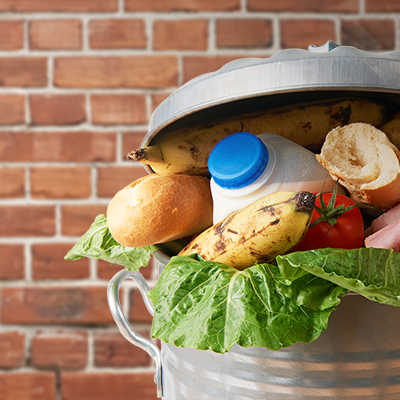 What a Waste: 40% of Food Discarded, 49 Million Go Hungry